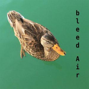 bleed Air - superpolar Taïps